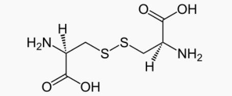 Molécule de la cystine: bienfaits, posologie et effets secondaires de cet acide aminé.