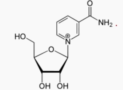Molécule de Nicotinamide riboside: bienfaits, posologie et danger de cette molécule.