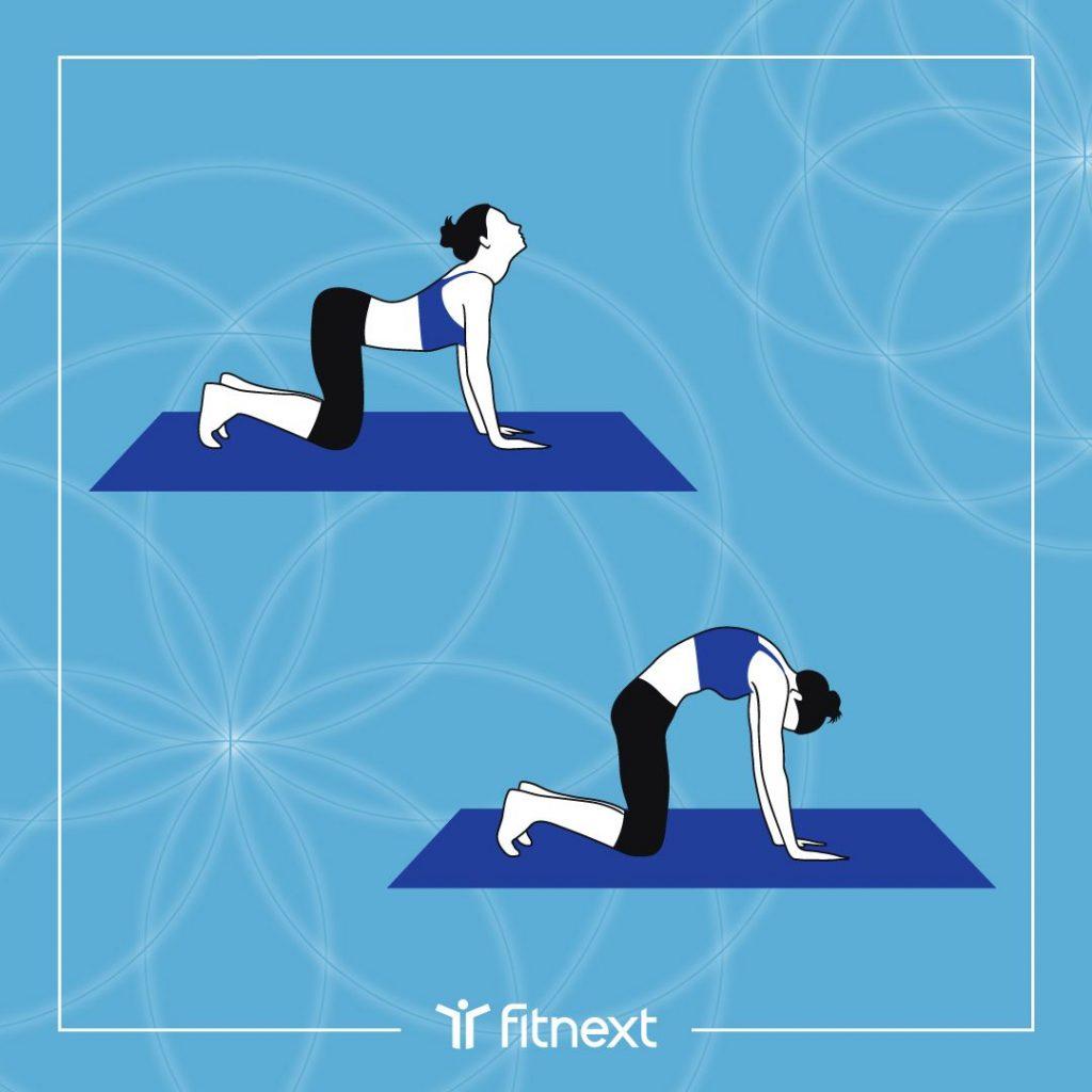 Yoga postnatal: posture du chat-vache.