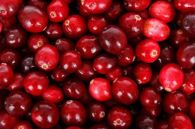 Cranberry : bienfaits, posologie et contre-indications des baies.