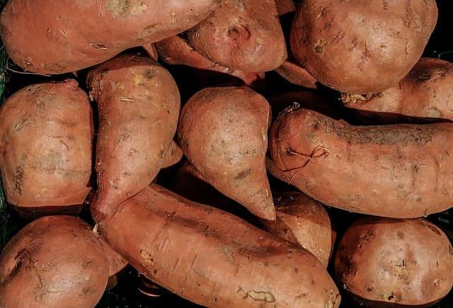 Patate douce : bienfaits et vertus de ce tubercule.