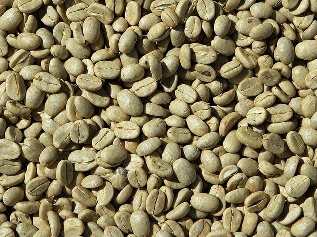 Café vert en grains : ses vertus, son utilisation et ses contre-indications.
