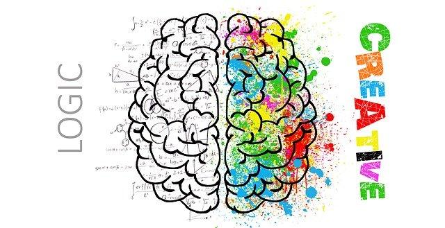 Cerveau représentant la personnalité : le MBTI permet de révéler la personnalité.