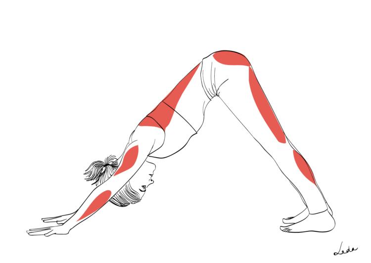 La posture du chien, pour soulager les jambes lourdes.