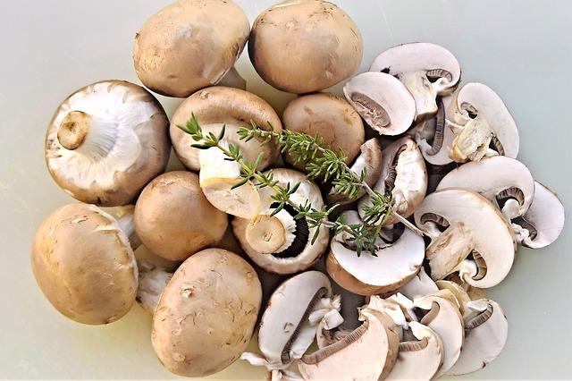Agaricus blazei: bienfaits et posologie de ce champignon.