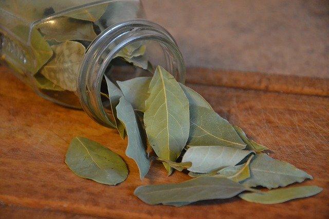 Laurier : une des plantes anti-inflammatoires.