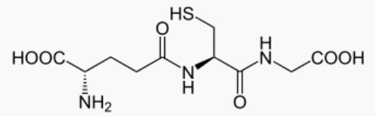 Molécule de glutathion : augmenter son taux naturellement.