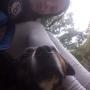 Ella J., Pomoc v domácnosti - Nový Jičín