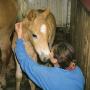 Soňa N., Opatrovanie detí - Nitriansky kraj
