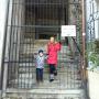 Lenka B., Pomoc v domácnosti - Bratislava 1 - Staré Mesto