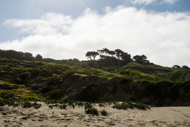 Funston Beach, Hillside