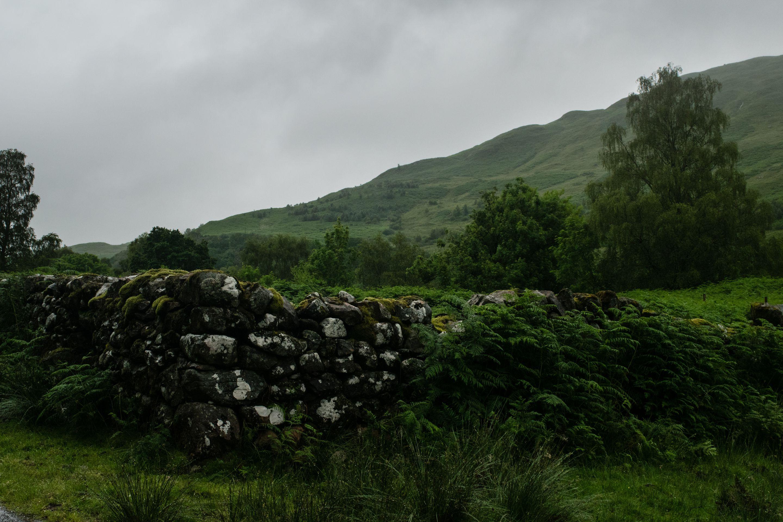 Scottish Highlands, Fence 1