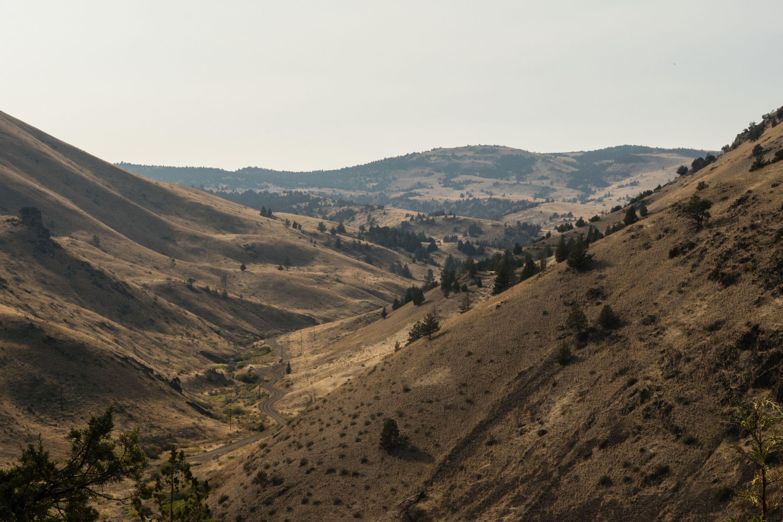 Ochoco National Forest, Oregon