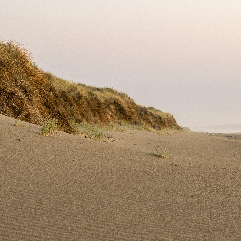 Oregon Backpacking, Beach