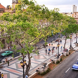Изучать испанский в Гаване, Куба DQ 10