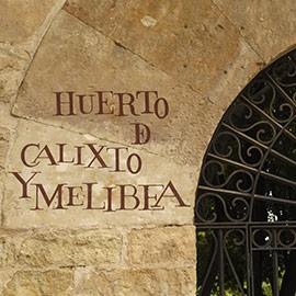 在萨拉曼卡(Salamanca)学习西班牙语 DQ 10