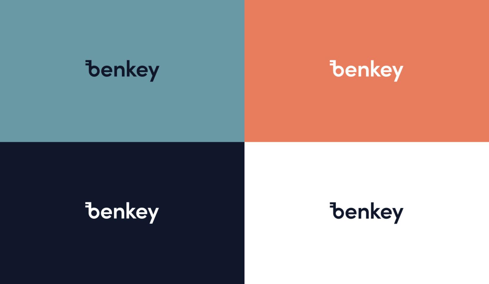 Benkey logovariatie