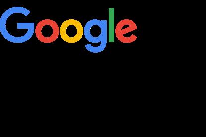 Google Logo Case 2x