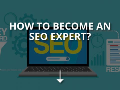 How to Become an SEO Expert? (+Tips)