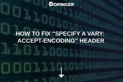 """How to Fix """"Specify a Vary: Accept-Encoding"""" Header"""