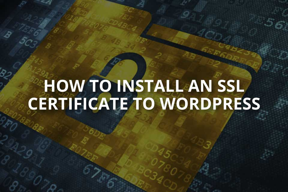 How to Install an SSL Certificate to WordPress