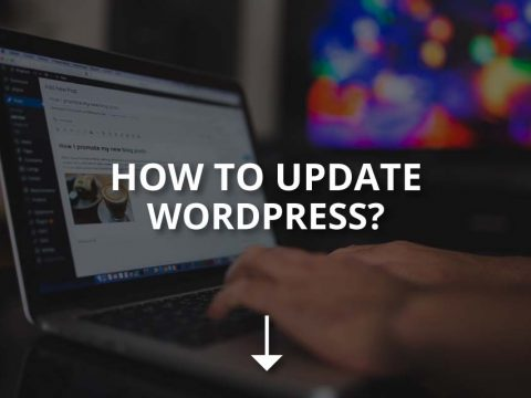 How to Update WordPress: A Beginner's Guide