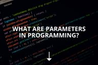 What Are Parameters in Programming?
