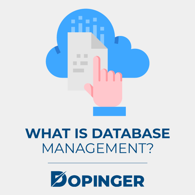 what is database management