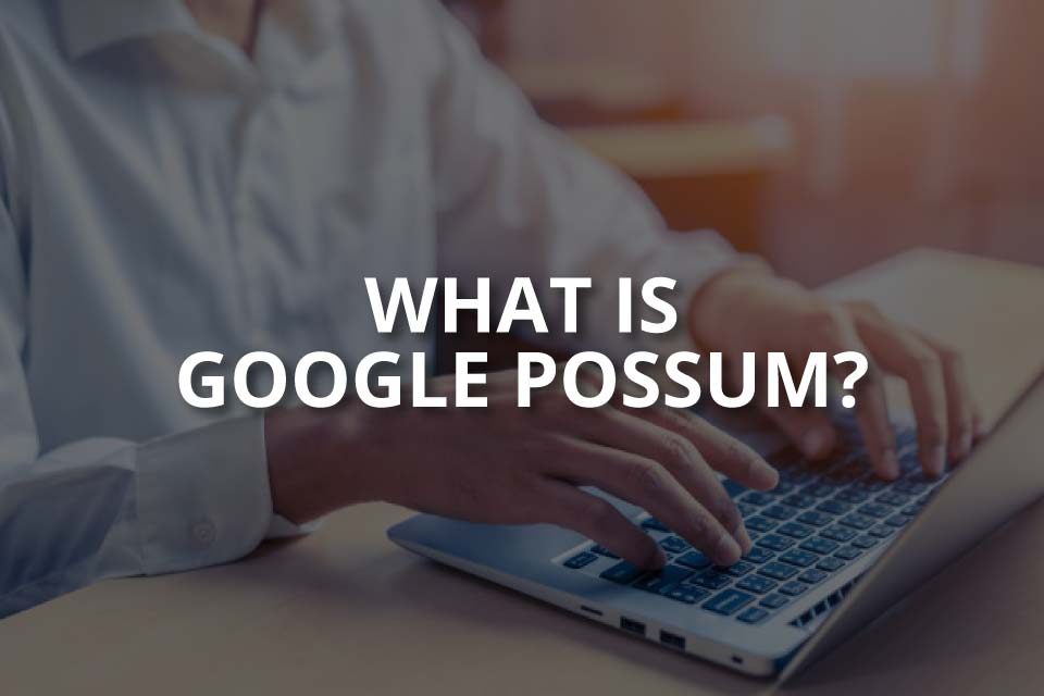 What Is the Google Possum Update? (In Detail)