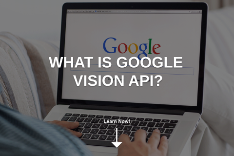 What Is Google Vision API