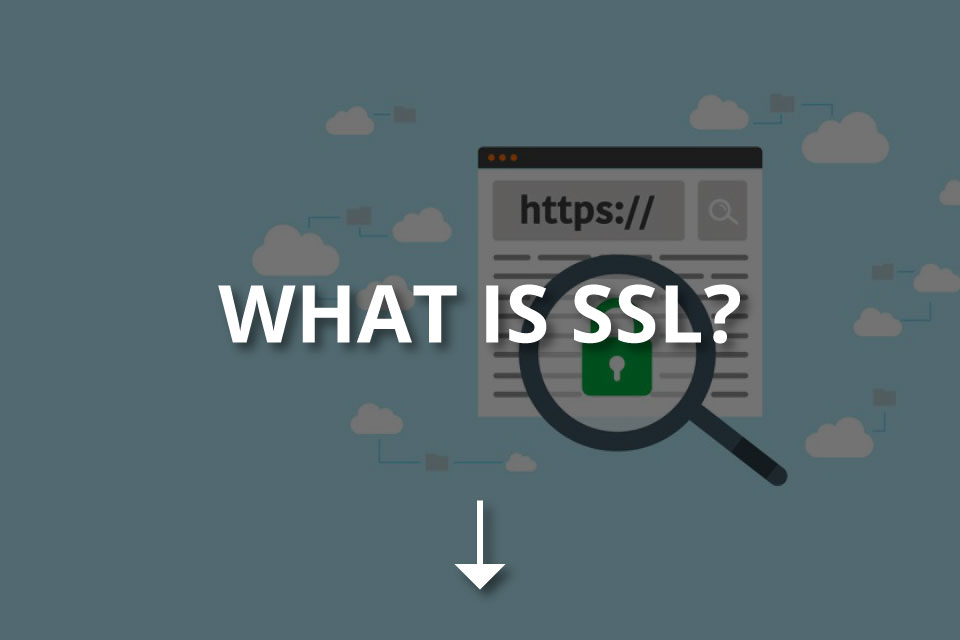 What Is SSL? (& SSL Certificate Types)