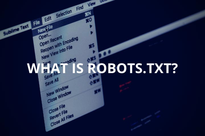 What is Robots.txt (+Including Example Codes)