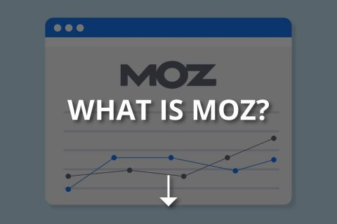 What Is Moz? (Features & How to Use It?)
