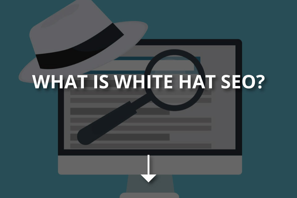 What Is White Hat SEO? (+Techniques)