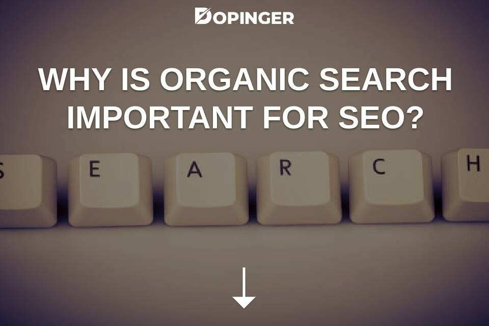 Why Is Organic Search Important For SEO?