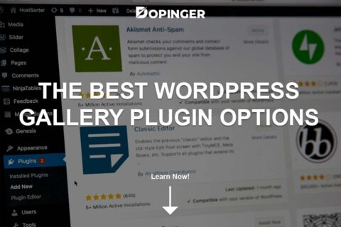 The Best WordPress Gallery Plugin Options