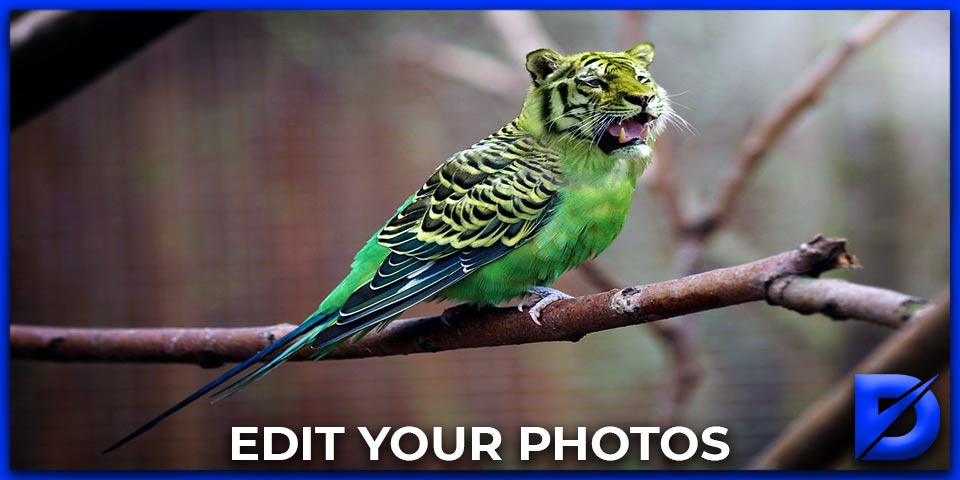 edit your photos