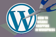 How to Disable Cropping in WordPress