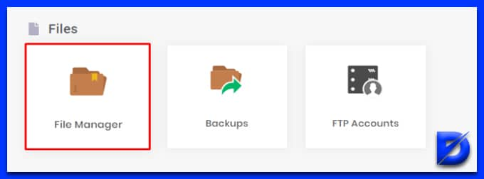 launch file manager