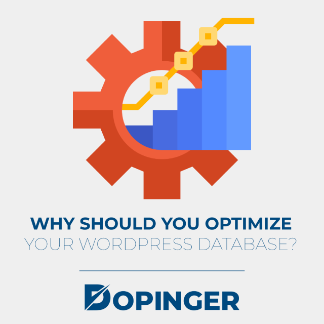why should you optimize your wordpress database