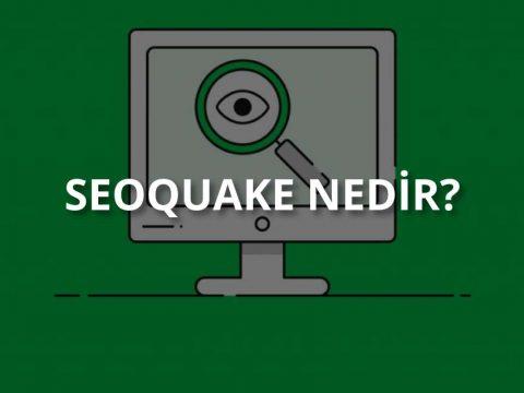 SEOquake Nedir?