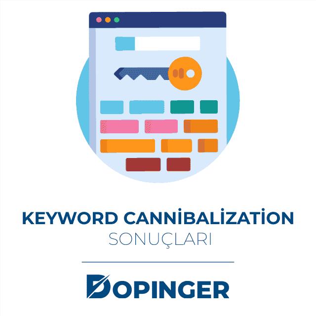 keyword cannibalization sonuçları