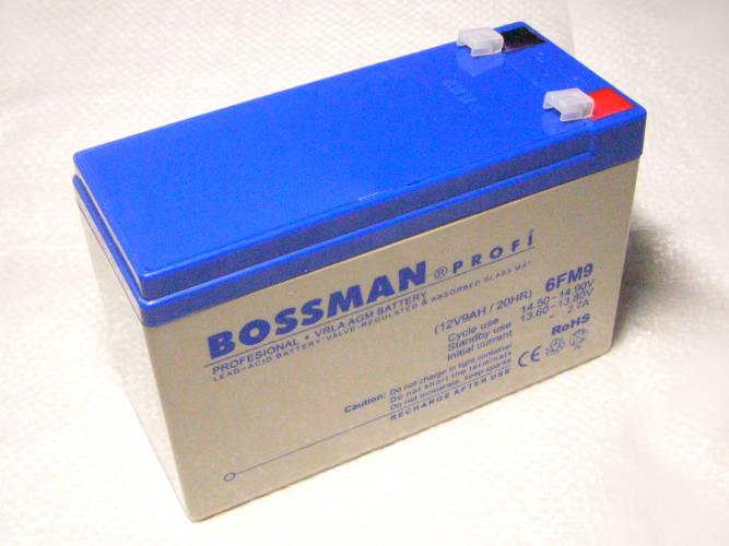 Аккумулятор BOSSMAN 6FM9 (12В, 9 А/ч)