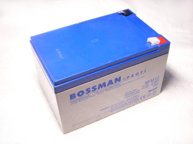 Аккумуляторная батарея Bossman 6FM12 на 12V емкостью 12Ah