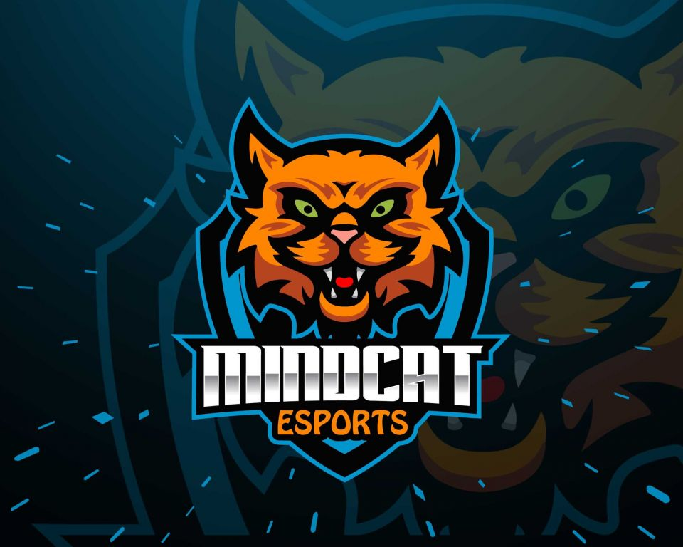 MindCat Esports pořádají turnaj pro komunitu, co k tomu říká manažer týmu?