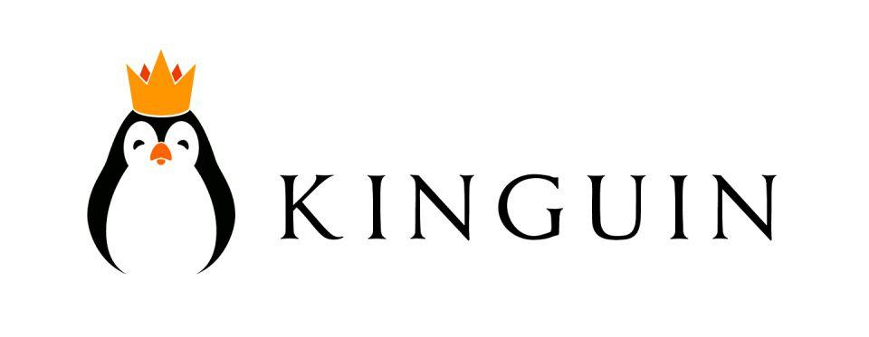 Kinguin ruší svoju Dota 2 divíziu