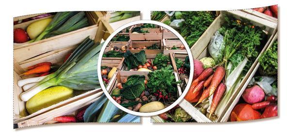 Panier de légumes bio locaux (Moyen 16 €, Petit 11 €, Grand 24 €)