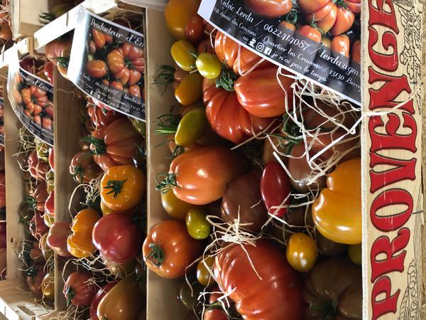 Tableau tomates en plateaux