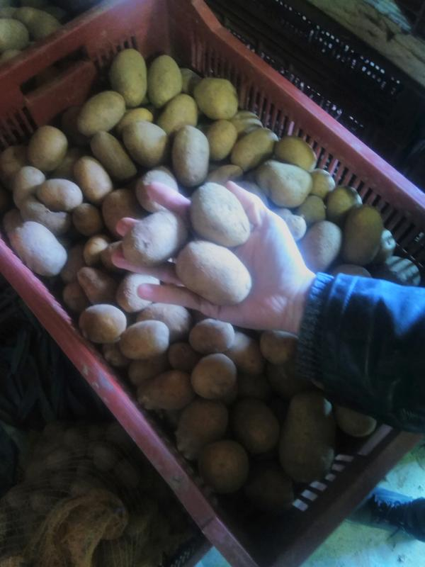 filet de pomme de terre