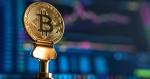 Rookies talk about cryptocurrencies